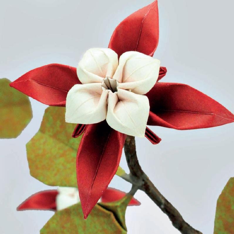 origami-bonsai-image.jpg